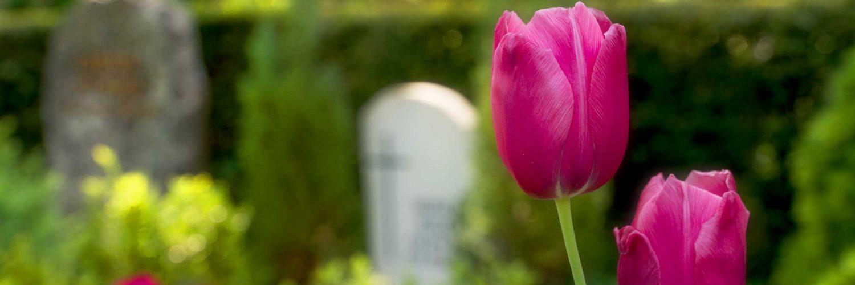 Bestattungen Beerdigungen St. Ingbert